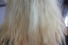 hair_blond3